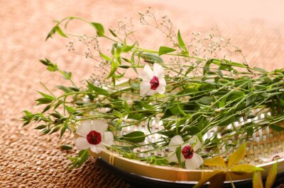 Fototapeta Spa kompozycji kwiatowych