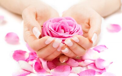 Fototapeta Spa manicure i ręce. Piękna kobieta ręce zbliżenie