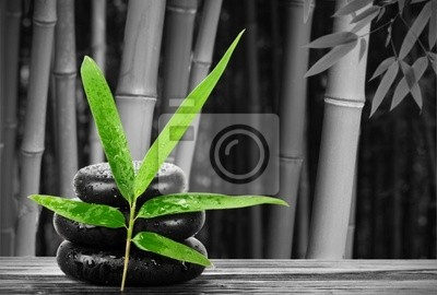 Spa Martwa natura z bambusa liści i kamieni zen