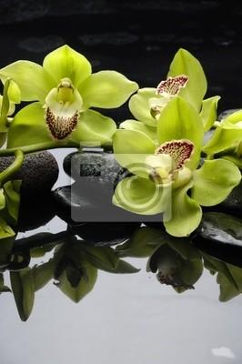 Spa Martwa natura z zielonym orchidea z refleksji