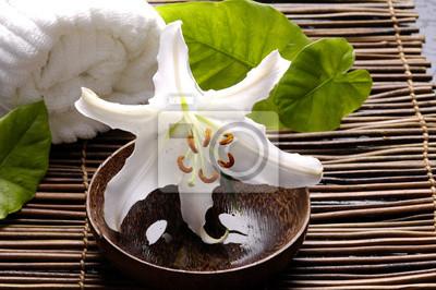 Spa skład białym madonna lilia