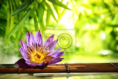 Spa still life z pływakiem lotosu na wodzie