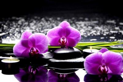Spa still life z zestawem różowa orchidea i refleksji kamienie
