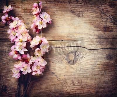 Fototapeta Spring Blossom na drewnianym stole