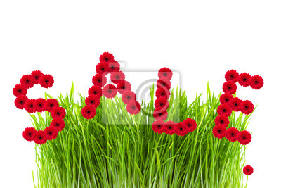 sprzedaż słowo z kwiatów gerber, zielona trawa na biały deseń