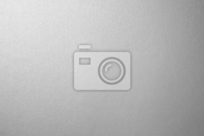 Fototapeta Srebrne tło tekstury papieru