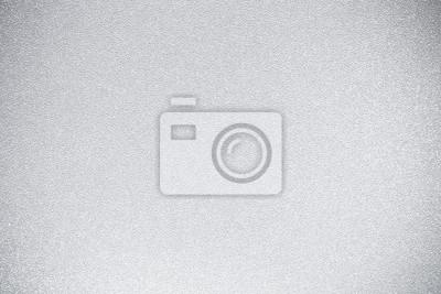 Fototapeta Srebrny Brokat Tło