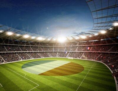 Fototapeta Stadion Francji P12