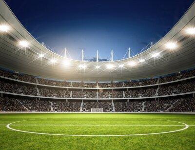 Fototapeta Stadion Mittellinie neutralne 3