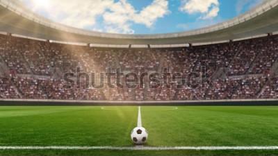 Fototapeta Stadion piłkarski w słońcu