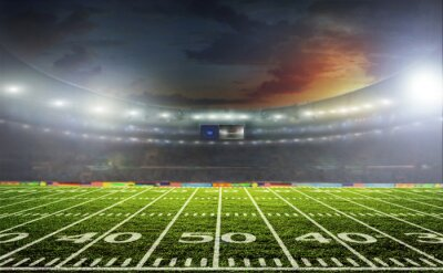 Fototapeta Stadion sportowych i koncertów pustych w słoneczny dzień