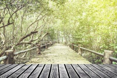 Fototapeta stare podłogi z drewna na moście, w lesie w lesie namorzynowe,