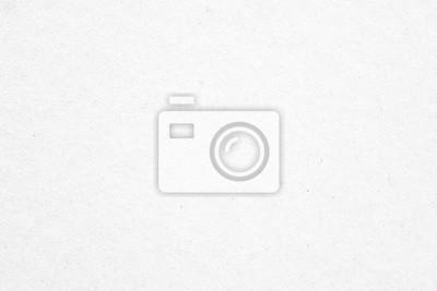 Fototapeta Stary biały papier tekstury tła