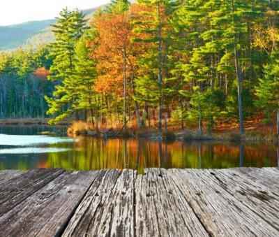 Fototapeta Staw w White Mountain National Forest, New Hampshire, USA.