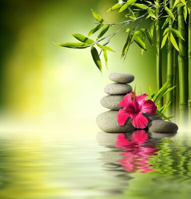Fototapeta Stones, czerwony hibiskus i Bamboo na wodzie