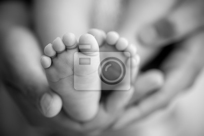 Fototapeta Stopy noworodka w rękach rodziców. Szczęśliwa rodzina oncept. Mama i tata ściskają nogi dziecka.