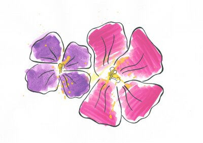 Fototapeta Storczyki Kwiat