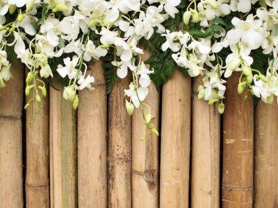 Fototapeta storczyków kwiaty na bambus tle