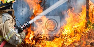 Fototapeta Strażacy rozpylają wodę na pożar