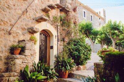 Fototapeta Street old traditional houses at Waldemossa, Mallorca island