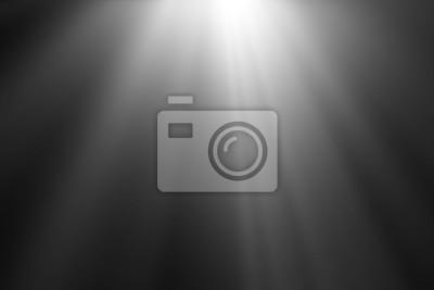 Fototapeta streszczenie piękne wiązki światła, promienie światła nakładki ekranu na czarnym tle.