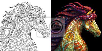 Fototapeta Strona Kolorowanka Konia Mustang Bezbarwne I Kolorowe