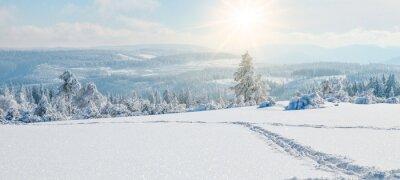 Fototapeta  Stunning panorama of snowy landscape in winter in Black Forest - winter wonderland