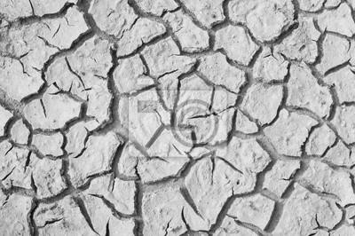Suchej gleby, czarno-białe zdjęcia