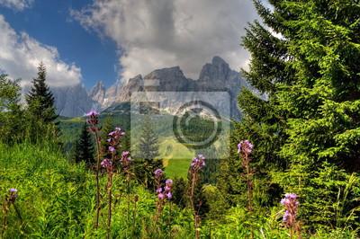 Fototapeta Süd Tyrol
