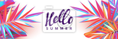 Fototapeta Summer banner. Background palm leaves branches of gradient color.