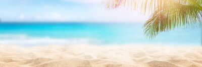 Fototapeta Sunny tropical beach with palm trees