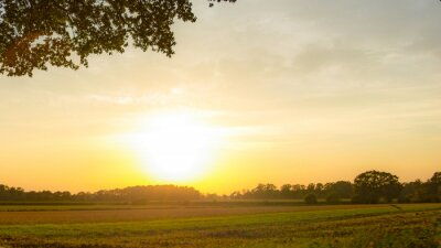 Fototapeta Sunsetting przez rolnika gruntu