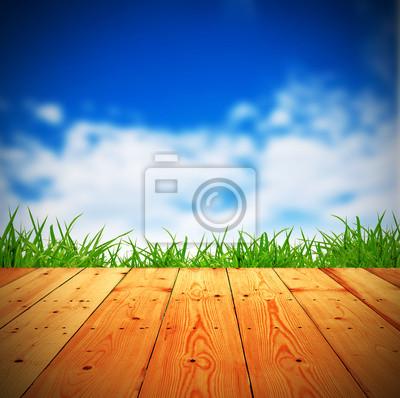 Świeże wiosny zielona trawa z niebieskim bokeh i światło słoneczne i drewna f