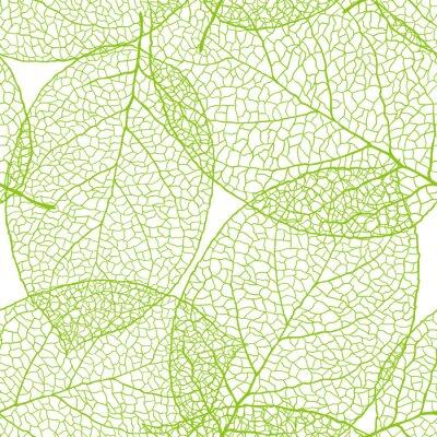 Fototapeta Świeże zielone liście w tle - ilustracji wektorowych