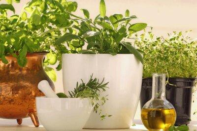 Fototapeta Świeże zioła aromatyczne