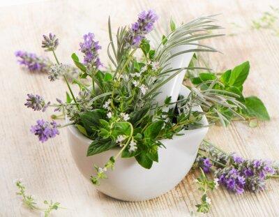 Fototapeta Świeże zioła na drewnianym stole