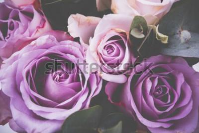 Fototapeta Świeży różowych róż makro- strzał, lato kwiaty, rocznika styl