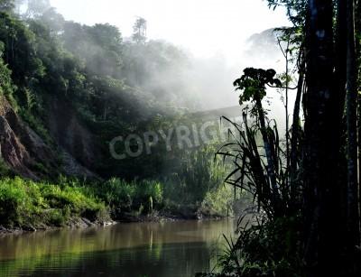 Fototapeta Świt nad rzeką tambopata w peruwiańskiej Amazonii