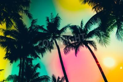 Fototapeta Sylwetka palma - filtr zabytkowe efektu i lekki filtr wycieku efekt
