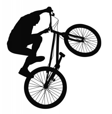 Fototapeta Sylwetka wektor rowerzysta sztuczka