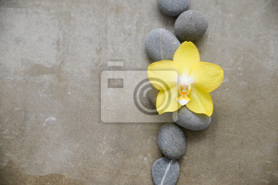 szare kamienie i żółta orchidea na szarym tle