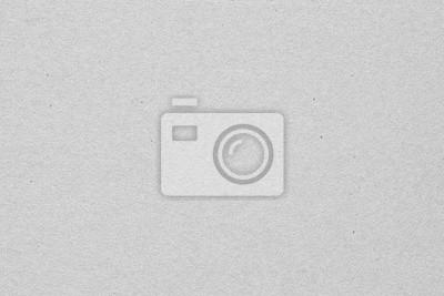 Fototapeta Szary papier tekstury Wysokiej rozdzielczości tła dla projektu tła lub nakładki projektu