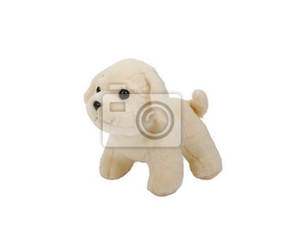 Fototapeta szczeniak zabawka