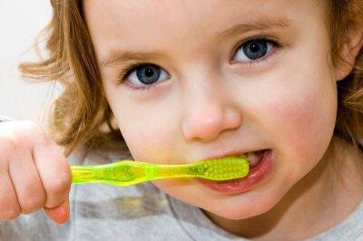 Fototapeta szczotkowanie zębów