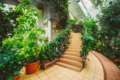 Fototapeta Szklarnia z kwiatami. Umiarkowany Dom Conservatory, botaniczny