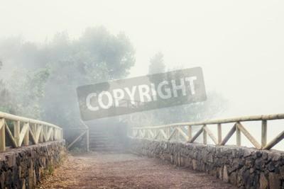 Fototapeta Szlakiem górskim w mglisty dzień, Teneryfa