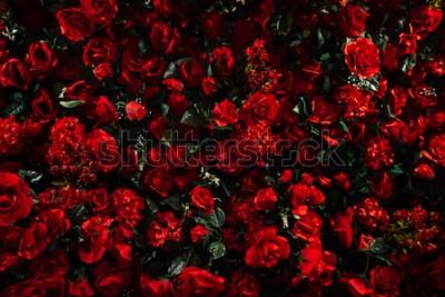 Fototapeta Sztuczne czerwone tło róża