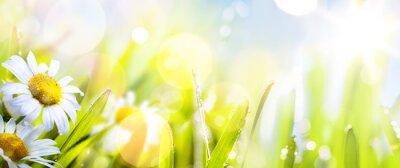 Fototapeta sztuka abstrakcyjna kwiat tle słoneczny springr