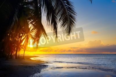 Fototapeta Sztuka Piękny wschód słońca nad tropikalną plażą