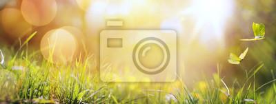 Fototapeta sztuka streszczenie tło wiosna lub lato tła ze świeżych g